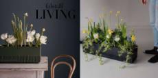 falstaff: ein Balkonpflanzenset von The Plant Box